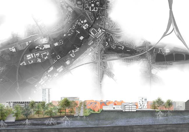 1806-Heverlee-snede-9.jpg