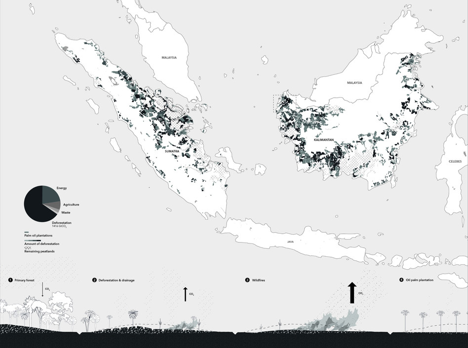 Drawing_2_deforestation_edited.jpg