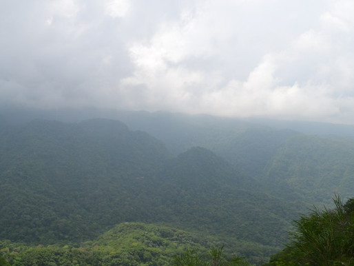 El Salvador's El Imposible National Park: Jungle Hiking