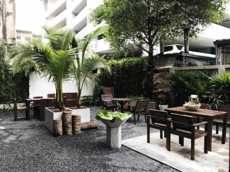 yim yam hostel garden