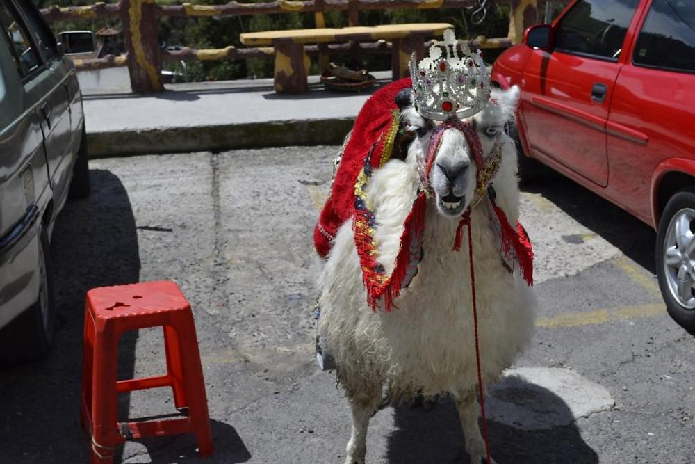 Las LajasCathedral