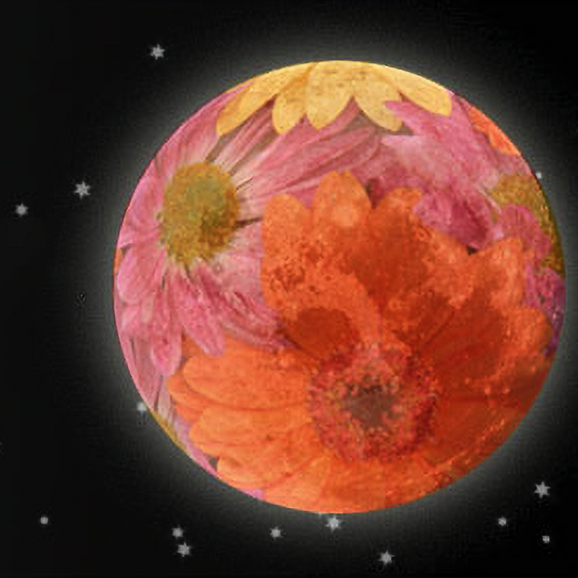Full Flower Moon Breathwork, Cacao Ceremony, and Bonfire!