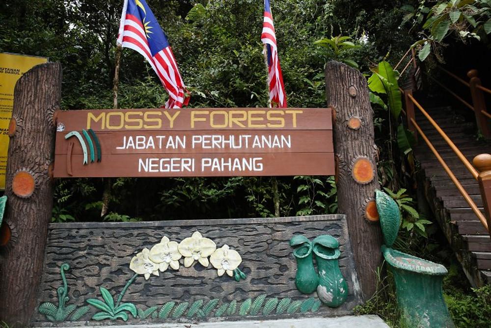 Malaysia-57