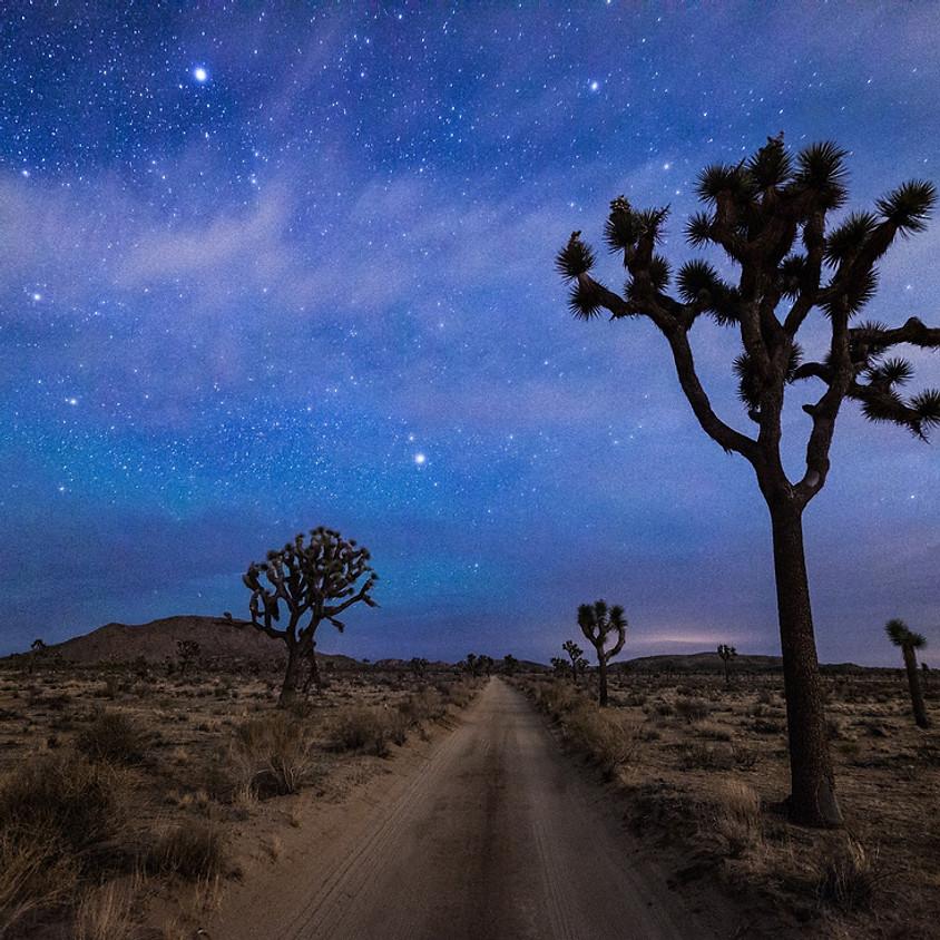 Joshua Tree Desert Rejuvenation Retreat