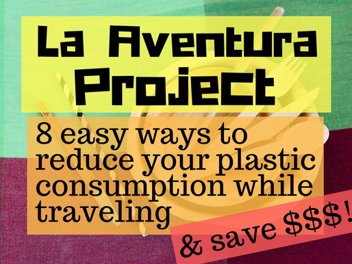 8 ways to reduce plastic consumption while traveling and SAVE $$$!!!
