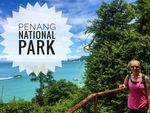 Penang National Park and Environmental Observances