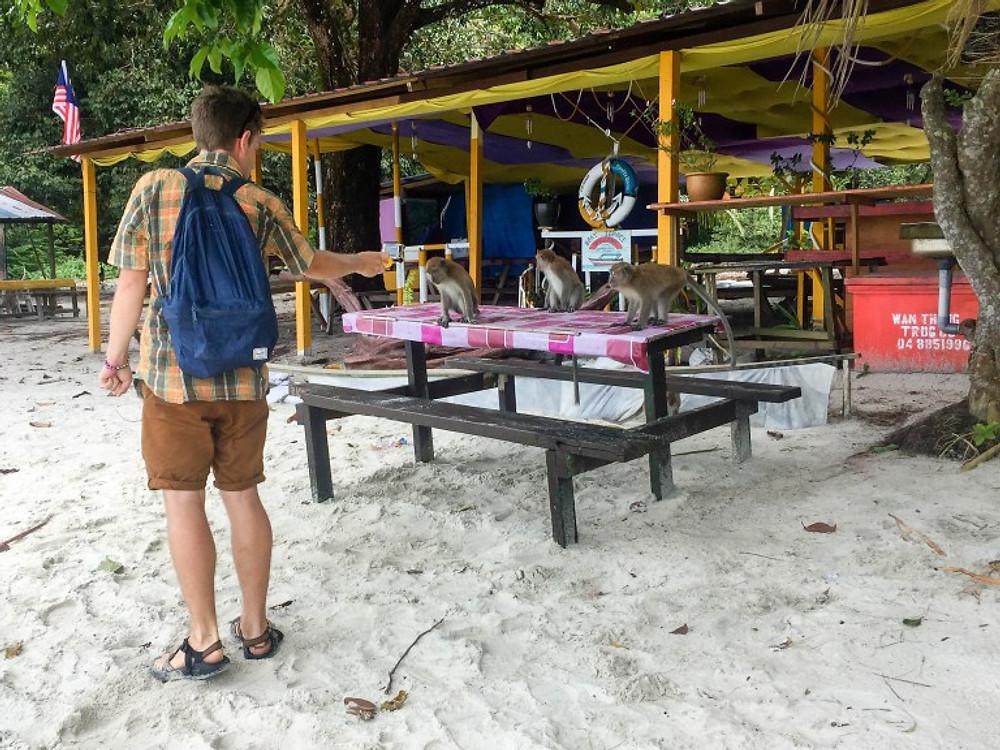Penang National Park - Monkey Beach