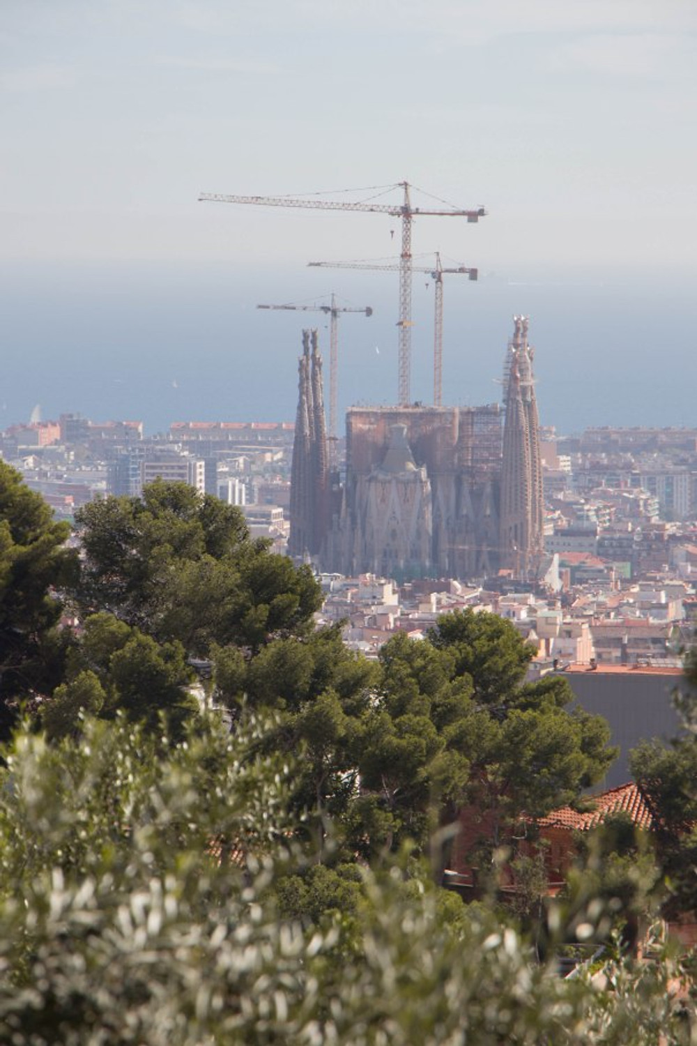 View of Sagrada Familia from the hilltop