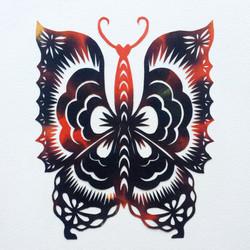 201703 Butterfly 01