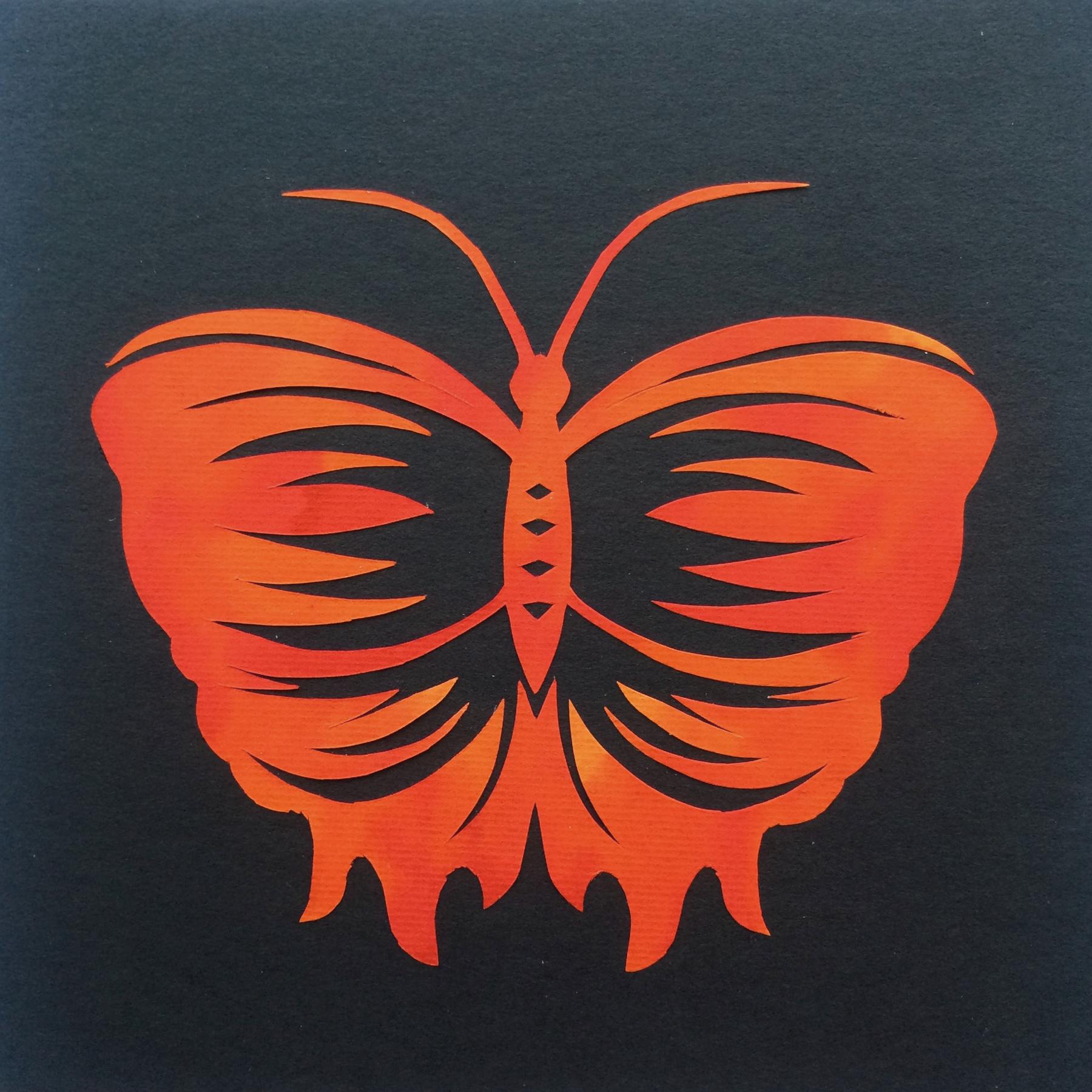 201703 Butterfly 31