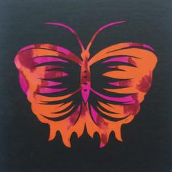 201703 Butterfly 29