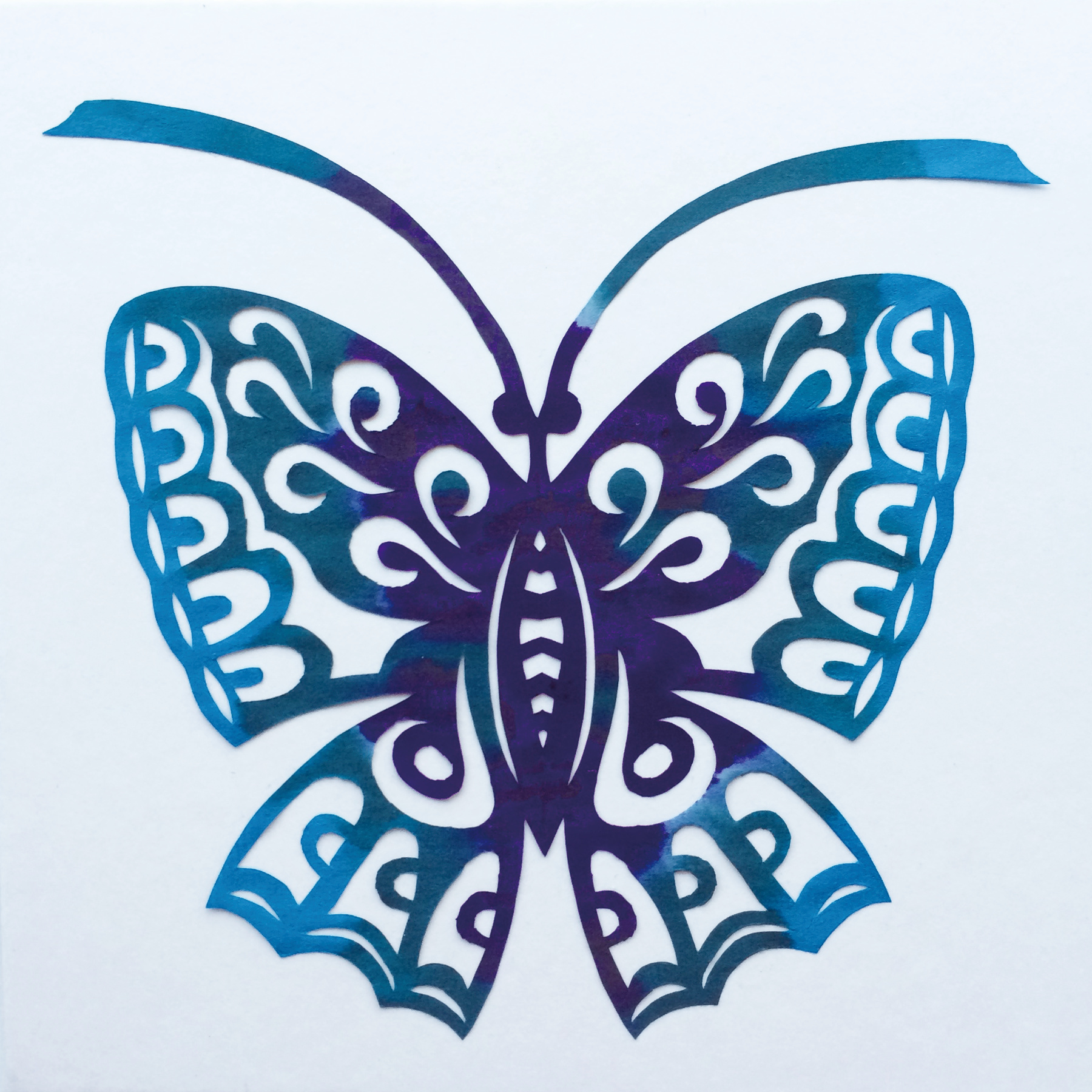 201703 Butterfly 14