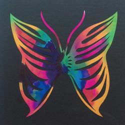 201703 Butterfly 24