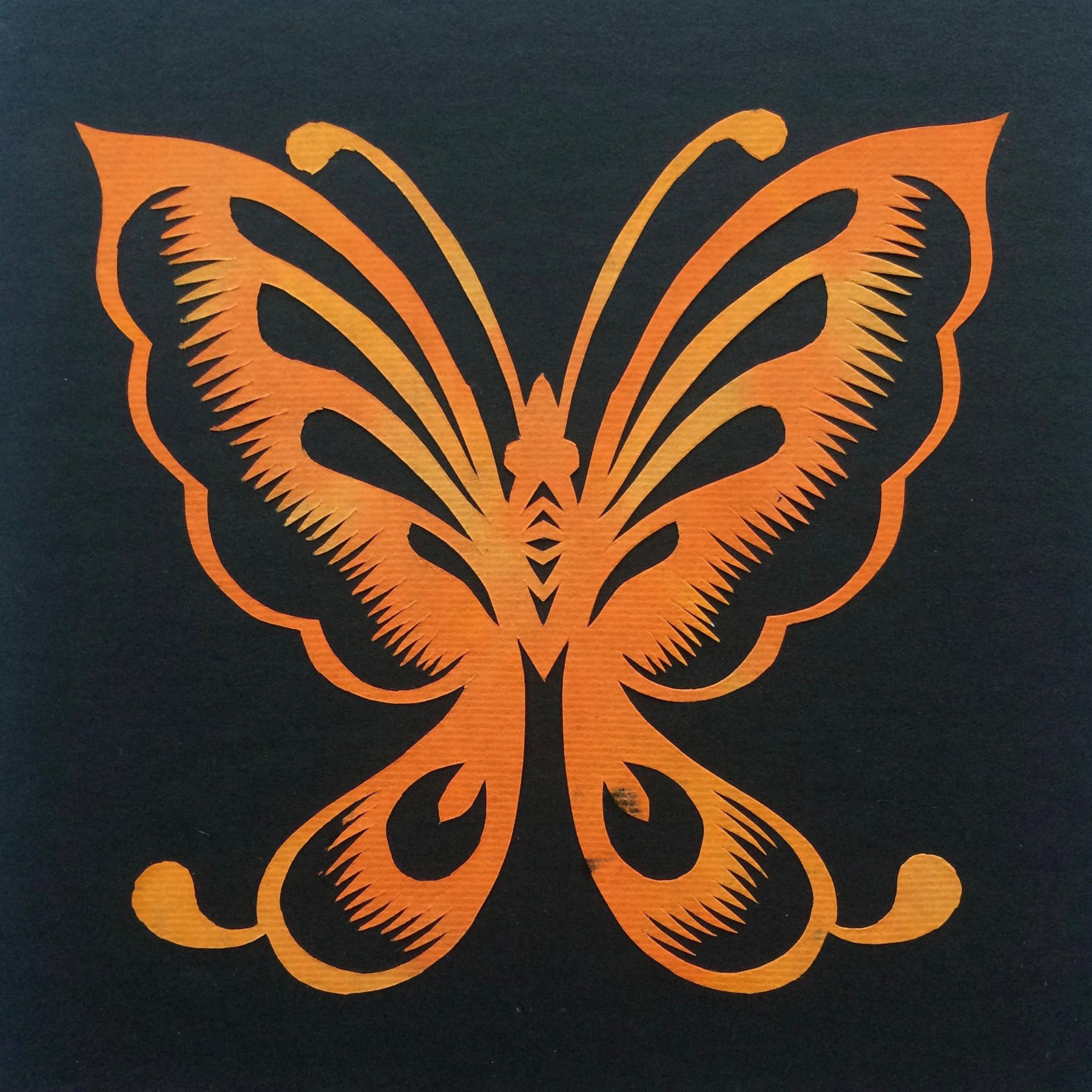 201703 Butterfly 27