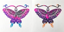 99 Pairs of Butterflies 14