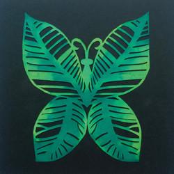 201703 Butterfly 23