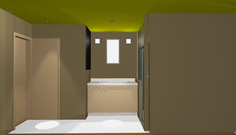 1519_Carpenter_Street_P07 curtainwall_03_09_15_2ndflrbath2.jpg