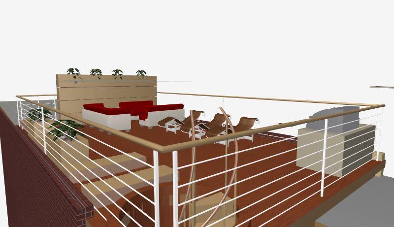 1519 CARPENTER Roof deck.jpg