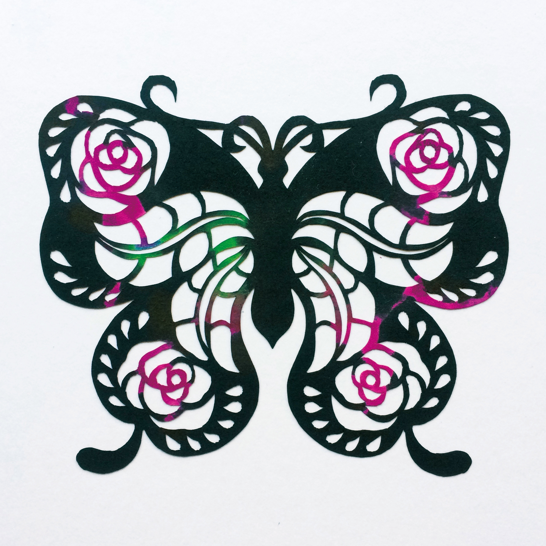 201703 Butterfly 05