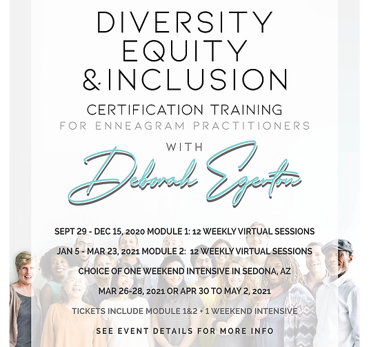 Diversity, Equity, and Inclusion Certification Training