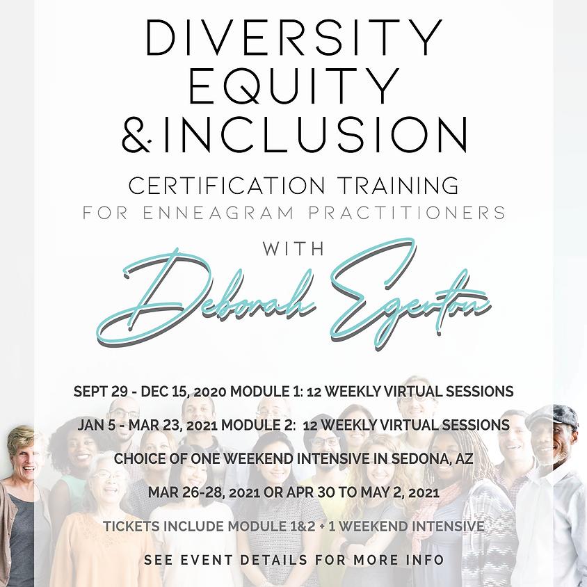 DE&I Certification Training