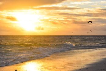 Sunset, Îlot N'Da