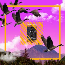 TeaTulia Posts 2_5.jpg