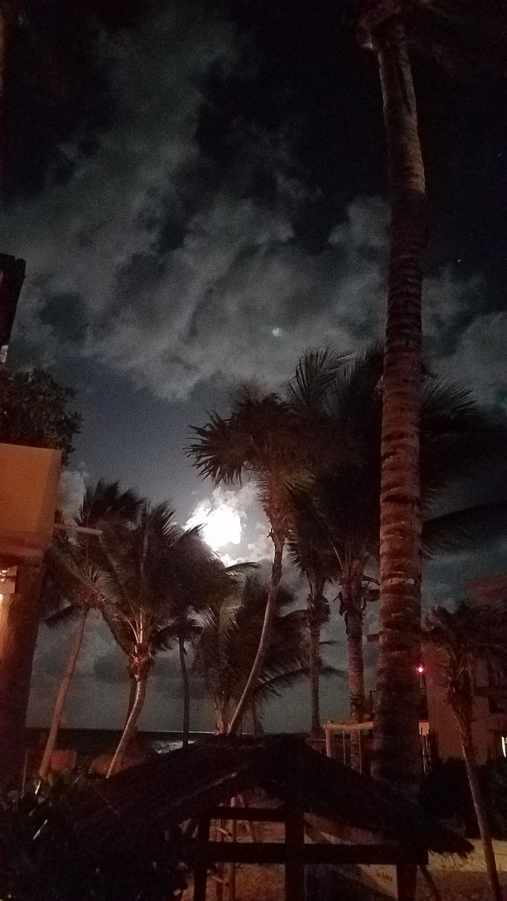 A full moon appears amongst clouds and palm trees on the beach in Tulum