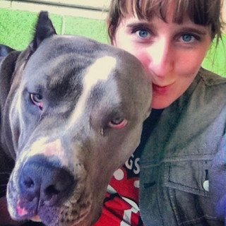 Pet Sitter Bonded and Insured