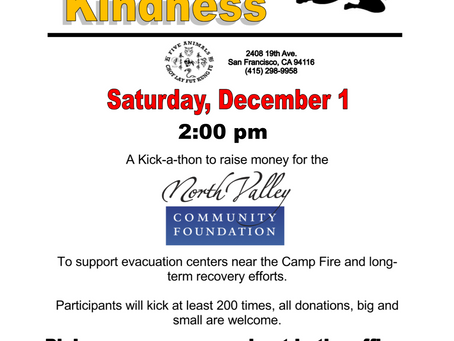 Kicking for Kindness -Fundraiser for Camp Fire
