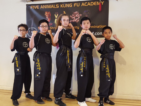 Congratulations to Five Animals Kung Fu Academy's first Black Belt graduates!