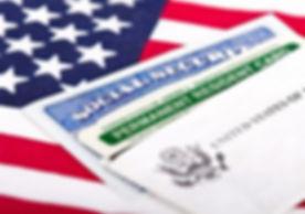 LPR Card, SSC, and USA Flag.jpg