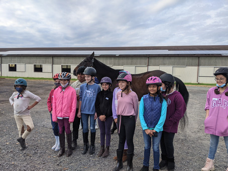 Girl Scouts Love Horse-in' Around!