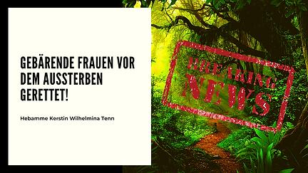Bio-Katzenfutter Blog Banner (23).png