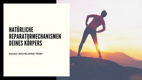 Natürliche Reparaturmechanismen Deines Körpers