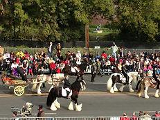 The Tournament of Roses Parade - Rose Parade