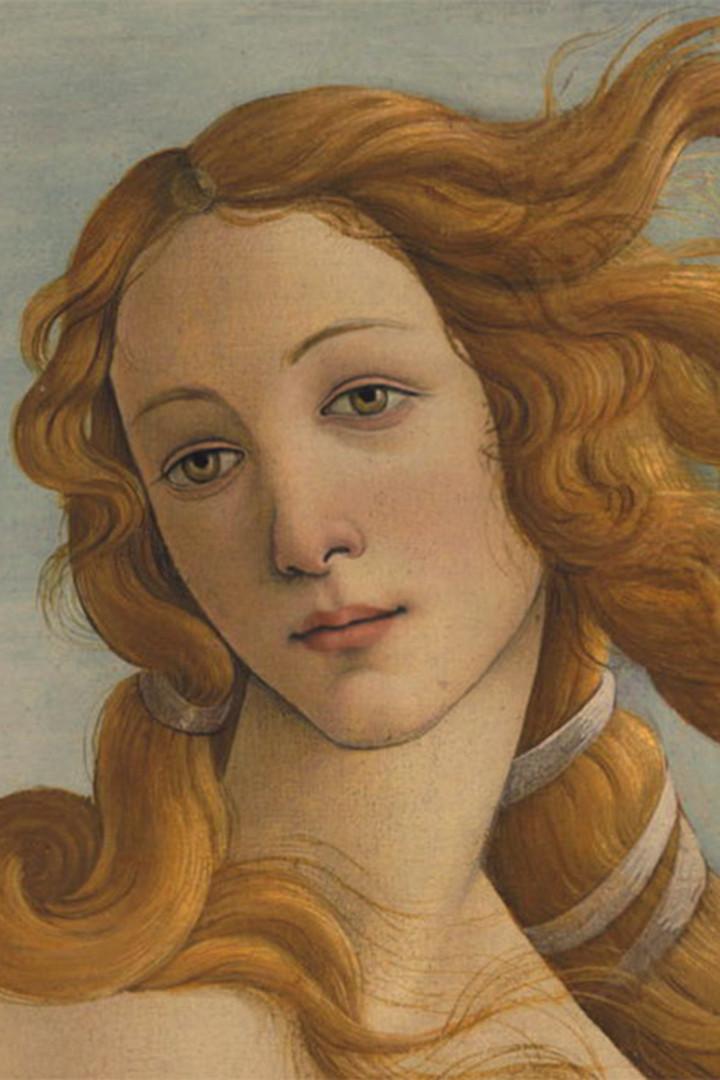 Venere-di-Botticelli-volto-viso copia.jp