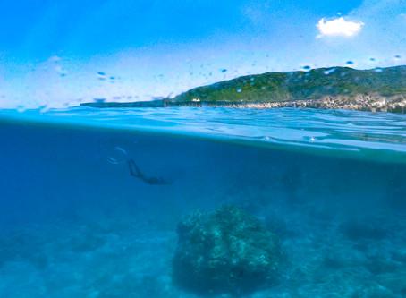 關於自由潛水的恐懼(下)