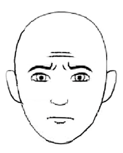 Как узнать, что вам лгут по выражению лица и глаз?