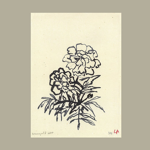 Lucy Augé - Marigold with Two Flowers Print