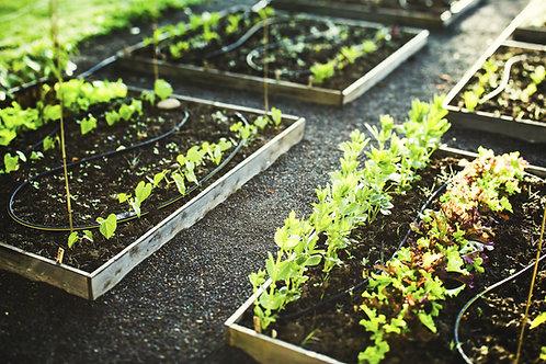Part-Time Gardener Pack