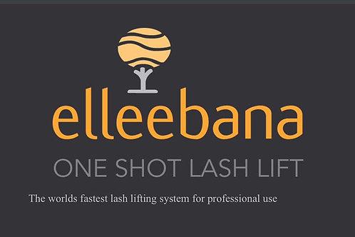 Hands-On The Complete Elleebana Training