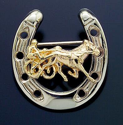 Standardbred Horseshoe Gold Pin