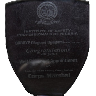 Institute of Safety Professionals of Nigeria