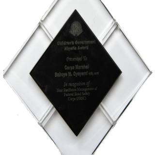 Children's Government Nigeria Award