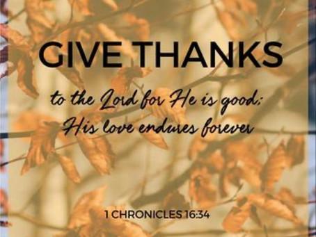 Gratitude is the open door to abundance.