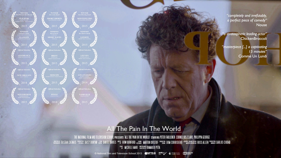 All The Pain In The World