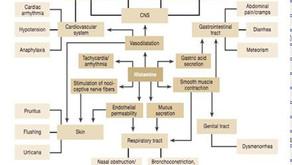히스타민 과민증(MD journal 2013.12)