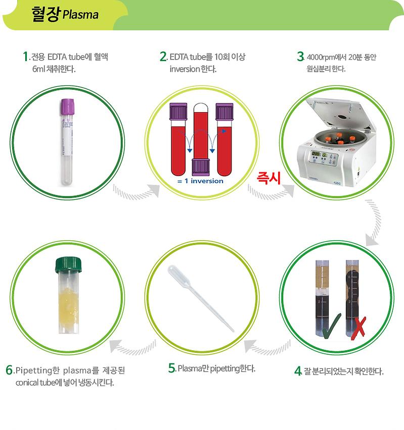 검사방법-혈장.png