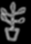 eliza%20drawings%20-%20flowers%20copy_ed